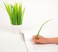 Bring your desk to life with Pooleaf Pens that look like blades of grass. The pen consists of the pen and the cap.
