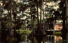 Cypress Lake Lafayette Louisiana