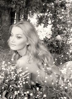 Barbara Bouchet Launch your own makeup line. Barbara Carrera, Barbara Bouchet, Classic Actresses, Classic Beauty, Iconic Beauty, Vintage Beauty, Old Hollywood, Hippy, American Actress