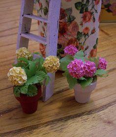Paso a paso: Plantas y flores
