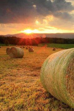 Sunrise on the Bales Country Farm, Country Life, Country Living, Country Roads, Beautiful World, Beautiful Places, Beautiful Sunset, Landscape Photography, Nature Photography