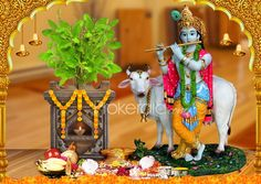 Tulsi Vivah Shubh Muhurat Timings, Date &Tulasi Vivaah Ki Katha