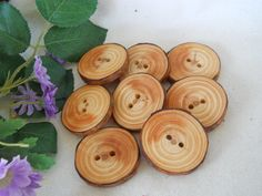 8 Wooden Tree Branch Buttons - Michigan Red Pine Wood - 1 5/8 - For Hats, Scarves, Journals, Pillows