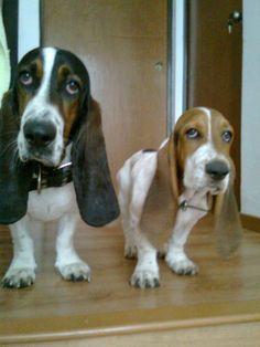 Double Trouble = double cuteness