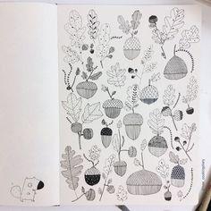 Acorns! #acorn #drawing #doodle #illustration #Squarell #moleskine #sketchbook #micron #sakuraofamerica
