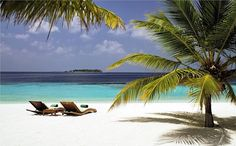 Coco Bodu Hithi in Maldives – GeorgiaPapadon