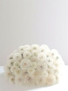 My Bouquet - Though I do know, wishes do not always come true.so, Bouquet of Hope ? White Flowers, Beautiful Flowers, Flowers Nature, Dandelion Wish, Dandelion Seeds, White Dandelion, Dandelion Flower, Deco Floral, Shades Of White