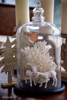 Coastal Christmas cloche!!! Bebe'!!! White coral with white porcelain reindeer!!!