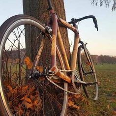 es herbstlt sehr.... And Roland loves his new self built singlespeed! #ozoncyclery