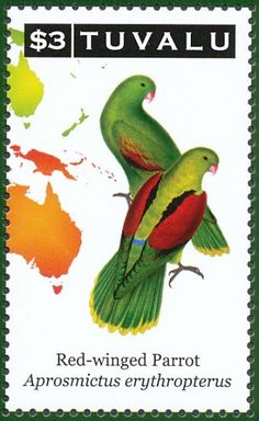 Red-winged Parrot stamps - mainly images - gallery format