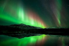 Northern Lights Over Iceland  Copy credit : Tommy Eliassen