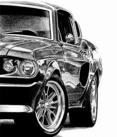 Mustang pencil drawing
