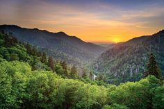 The South's National Parks: Newfound Gap in the Great Smoky Mountains
