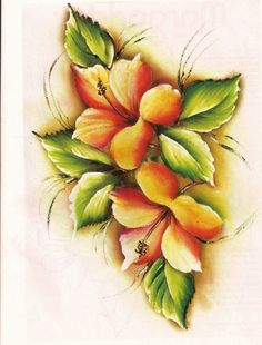 hibisco+pintado.jpg (1217×1600)