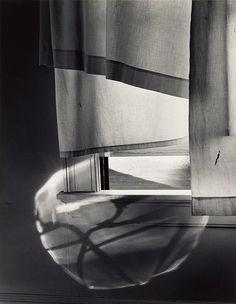 Windowsill Daydreaming, Rochester, New York — by Minor White (1958) Via Stephen Ellcock