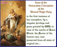 Feast of the Immaculate Conception of the Blessed Virgin Mary Pic Quote