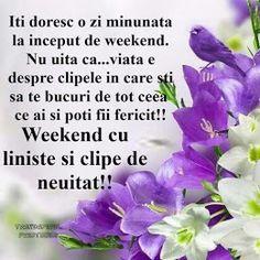 Imagini pentru weekend minunat Happy Weekend, Motivation, Day, Nature, Determination, Inspiration