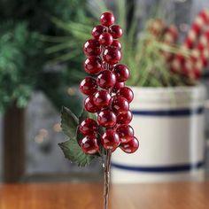 Burgundy Grape Cluster Stem