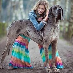 PHOTOGRAPHY OF THE DAY DECEMBER 23, 2016 Photography by Ell-Limits Photography Model: Lauren Sirica Makeup Artist & Hair: The Paintbox Styling & clothes: Hippietwin  #animals  #greatdane  #dog  #Belgium  #Photography  #solismag  #mysolis  #fashion  #MAGAZINE  #publication  #styling  #Model  #park #solismagazine  If you like this photo and would like to see more please follow and support our Instagram profile today.