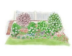 Porch Border Garden