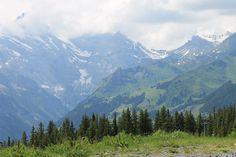 Wengernalp, Switzerland - June 2014