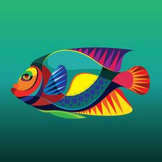 I've had a real pleasure working on this new series of Tropical Fish vector illustrations. These guys are part of a larg. Endangered Fish, Endangered Species, Caribbean Art, Fish Vector, Fish Design, Fish Art, Whimsical Art, Tropical Fish, Oeuvre D'art
