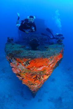 Treasures Of The Sea| Serafini Amelia| Corveta Ipiranga V-17... Fernando de Noronha, Brasil...