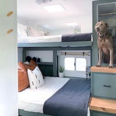 Are you a CAMPER or a GLAMPER? Whatever this is.... sign me up! 🙋🏽‍♀️ Did you know Beddy's are perfect in RVs? It's true! 🤗 📷: @thehappyglamperco #beddys #zipyourbed #zipperbedding #camping #trailers #rv's #camperbedding #campinginstyle #tinyhomes #campers #campinglife #campingtrip #campingfun #bedroomideas #bedroomgoals Beddys Bedding, Camper Beds, Zipper Bedding, Make Your Bed, Be Perfect, Bunk Beds, Tiny House, Comforters, Bedroom Decor
