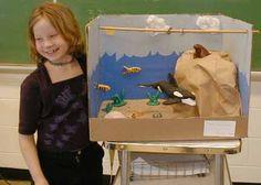 whale habitat school project - Google Search