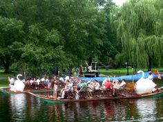 """Photo of Swan Boats of Boston. Here are some more inexpensive New England """"Spring Break"""" #travel ideas for parents and their school age children: http://visitingnewengland.com/blog-cheap-travel/?p=2246"""