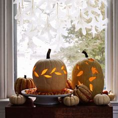 Create a curtain of ghostly leaves to soften the moonlight. - FamilyCircle.com