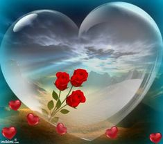 How to make someone fall in love with you. Love Heart Images, Love You Images, Heart Pictures, Good Morning Beautiful Pictures, Romantic Pictures, Beautiful Rose Flowers, Love Rose, Valentines Gif, Beautiful Fantasy Art