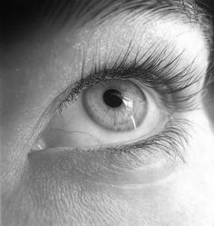 by Flavio This is Pencil Drawings.. Not A photography.. Hyperrealism.