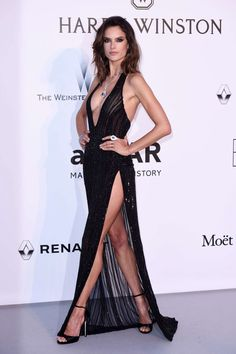 alessandra-ambrosio-at-amfar-s-24th-cinema-against-gala-at-cannes-film-festival-05-25-2017_9.jpg (1200×1803)