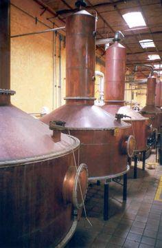 Destilería de José Cuervo, donde se produce uno de los #tequilas más sabrosos de todo el mundo.