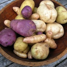Find Out How to Grow Tasty Potatoes in Containers Ve able GardeningGardening TipsContainer GardeningTexas