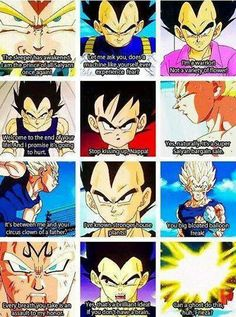 Vegeta... what else is there to say?