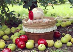 Fall photography baby girl apple orchard