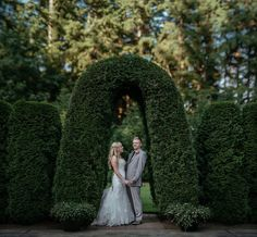 bride and groom standing under hedge arch wedding day portrait by Matt Shumate Photography at the Evergreen Gardens in Ferndale WA Arch Wedding, Wedding Shoot, Wedding Day, Evergreen Garden, Garden Weddings, Hedges, More Pictures, Wedding Portraits, Groom