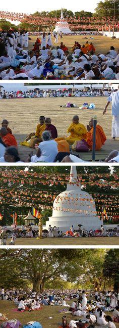 crowds of pilgrims, Anuradhapura, Sri Lanka Native Country, Pilgrims, Im In Love, Buddhism, Sri Lanka, Traveling By Yourself, Asia, Wanderlust, Tours