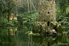 Jardim da Condessa d'Edla | Parques de Sintra