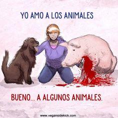 La hipocresía de algunos amantes de algunos animales. Sé Vegano.