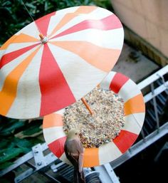 vogelfutterhaus selber bauen aus gestreiften Tellern
