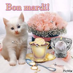 Bon Mardi, Happy Friendship Day, Greeting Cards, Messages, Birthday, Gifs, Good Morning Picture, Days Of Week, Pictures