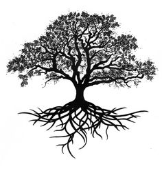 tree roots tattoo - really loving the idea of a tree tattoo Trendy Tattoos, New Tattoos, Body Art Tattoos, Dragon Tattoos, Tatoos, Tattoo Drawings, Tattoo Life, Tree Of Life Tattoos, Tattoo Ideas