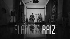 """Planta e Raiz : """"Com certeza"""""""