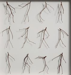 Twelve Twigs - Details by Chris Kenny