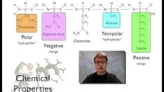 organic chemistry paul anderson - YouTube