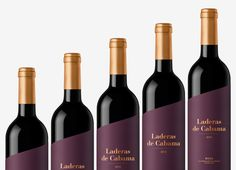 Laderas de Cabama on Packaging of the World - Creative Package Design Gallery