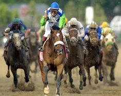 Ahhh, sweet Barbaro after he crossed the finish line to win the Kentucky Derby…
